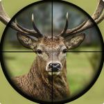 Wild Hunter Sniper Buck